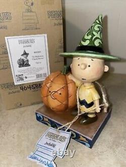 RARE Jim Shore Enesco Peanuts IT'S HALLOWEEN CHARLIE BROWN Figurine 4045889 NIB