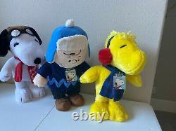 Arachides Charlie Brown Snoopy Woodstock Vacances Christmas Greeters Peluche 18-20